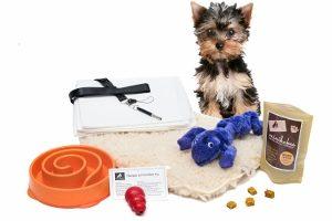 new puppy training bundle